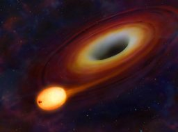 Star at Start of Disruption by Black Hole