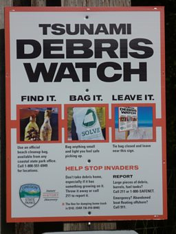 Debris watch