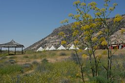 Ecotourism camp site in the Dana Reserve in Jordan