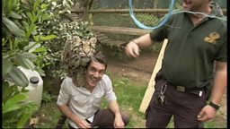 Joe meets Tiwada the Clouded Leopard at Howletts Wild Animal Park