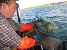 CREEL FISHING AT GAIRLOCH