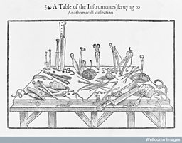 Instruments for dissection,