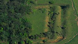 A Brazilian geoglyph emerging from the rainforest