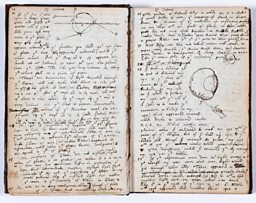 Newton's notebooks