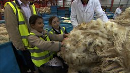 How is wool made?
