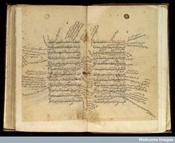 Double page from Mugiz al-Qanun, an Arabic medical text