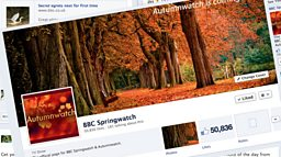 Autumnwatch Facebook