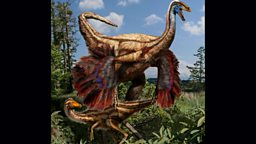 Artistic reconstruction of the feathered ornithomimed dinosaurs found in Alberta, Canada