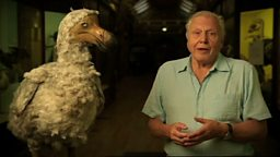 Attenborough's Ark image