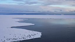 The longest day in Antarctica