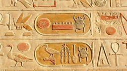 Egypt's animal mummy 'scandal' revealed