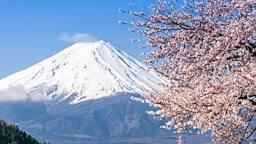 Free internet for Mount Fuji climbers  日本富士山向游客提供免费无线网