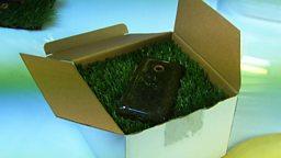 Grass phone