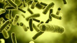 Antibiotics resistance warning  专家警告称后抗生素时代即将到来