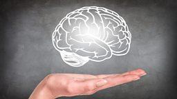 Memory research wins 'Brain Prize' 欧洲大脑奖颁给脑记忆研究项目