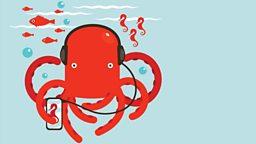 """Social octopus """"合群""""的章鱼"""