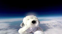 Astro-dog 太空玩具狗