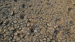 India drought: '330 million people  affected' 印度严重干旱:3.3亿国民受影响