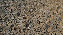 India drought: '330 million people  affected' 印度严重干旱:3.3亿国民受影响