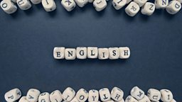 语法:从句和代词的运用