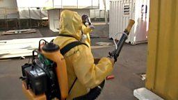 Zika virus, Rare whale filmed in Australia 寨卡病毒传播风险,澳大利亚拍到罕见鲸鱼影像