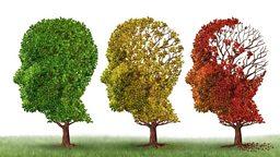 "Dementia game 'shows lifelong navigational decline' 游戏助失智症研究—""方向感随年龄增长而减弱"""