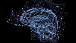 "Prize for cracking brain's 'feel good' system 三位科学家因破解大脑""奖赏系统""获奖"