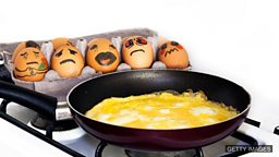 You can't make an omelette without breaking eggs 有失才有得