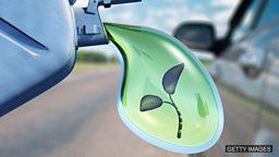 Waste products key to boosting UK biofuels 废物残渣是增加英国生物燃料产量的关键