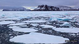 North Pole expedition, spoilt babies 北极探险考察, 婴儿用品市场的兴起