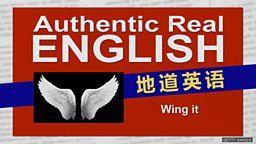 "Wing it 的意思是""扇翅膀""吗?"
