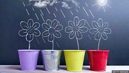 小测验 — 描述春季气候的常用词语