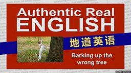 "Barking up the wrong tree 英国人用 ""喊错了树""表示""攻击错了目标"""
