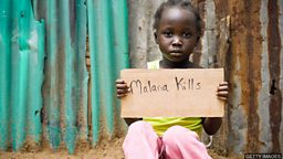 Malaria experts fear disease's resurgence 研究人员担忧疟疾疫情再起