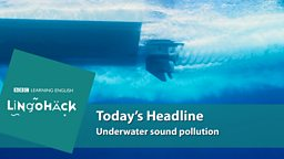 Underwater sound pollution