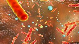 Novel antibiotic effectively kills bacteria 新型抗生素能有效杀灭细菌