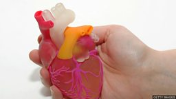 3D printing human anatomy 用 3D 打印技术制作出的人体解剖模型