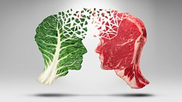 Debating veganism: How to change someone's opinion