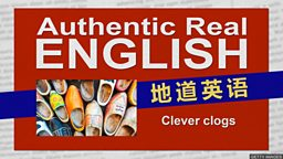 Clever clogs 自以为聪明的人