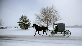 Image for Leaving Amish Paradise