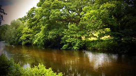Image for Britain's Natural World: Wild Summer River