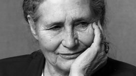 Doris Lessing - the Nobel-prize winning feminist author who has died at the age of 94