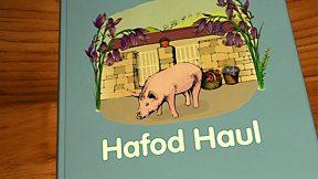 Hafod Haul