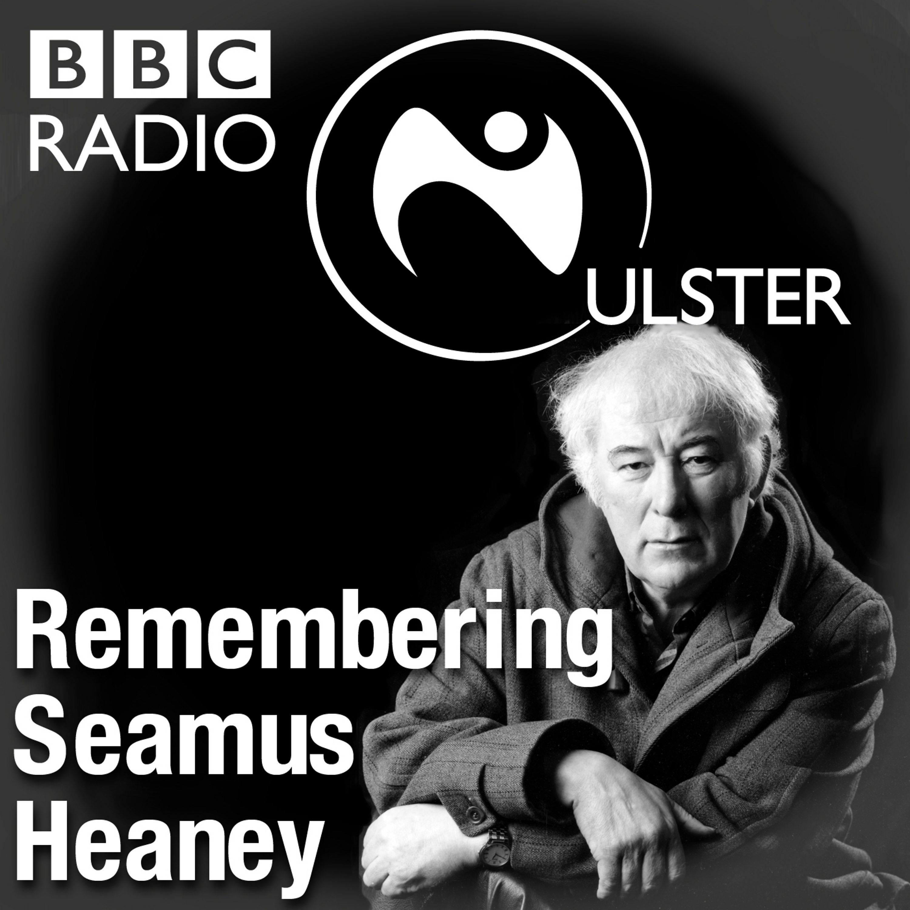 "an introduction to the life of seamus heaney Seamus heaney's irish history  introduction to ""punishment"":  her skeletal frame in life compares to the literal skeletal remains found when she."
