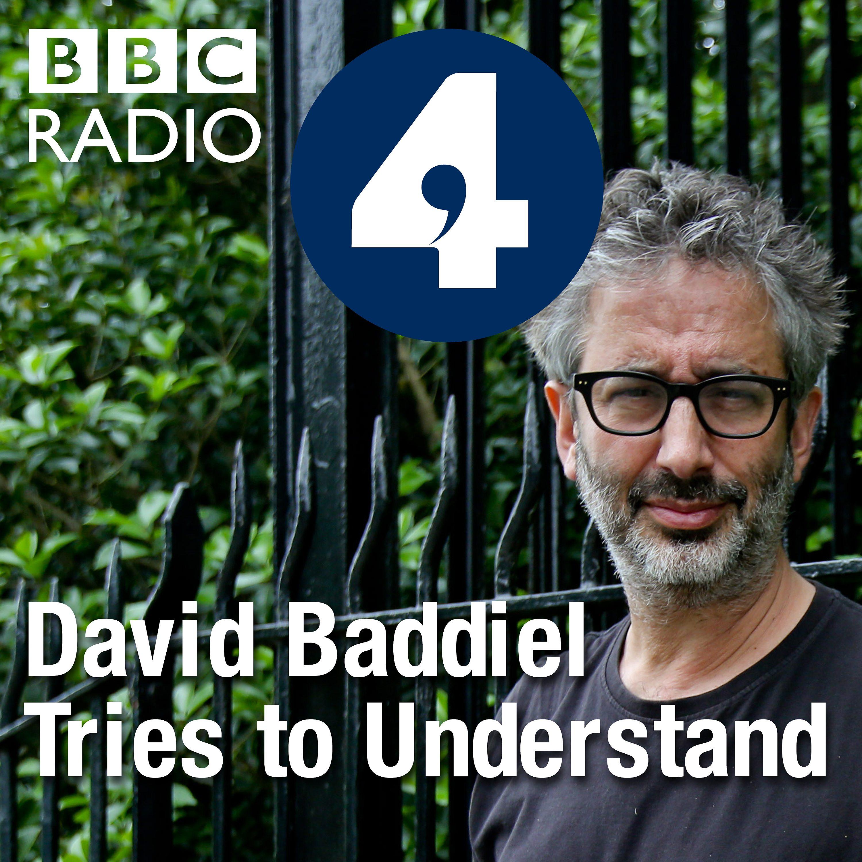 David Baddiel Tries to Understand