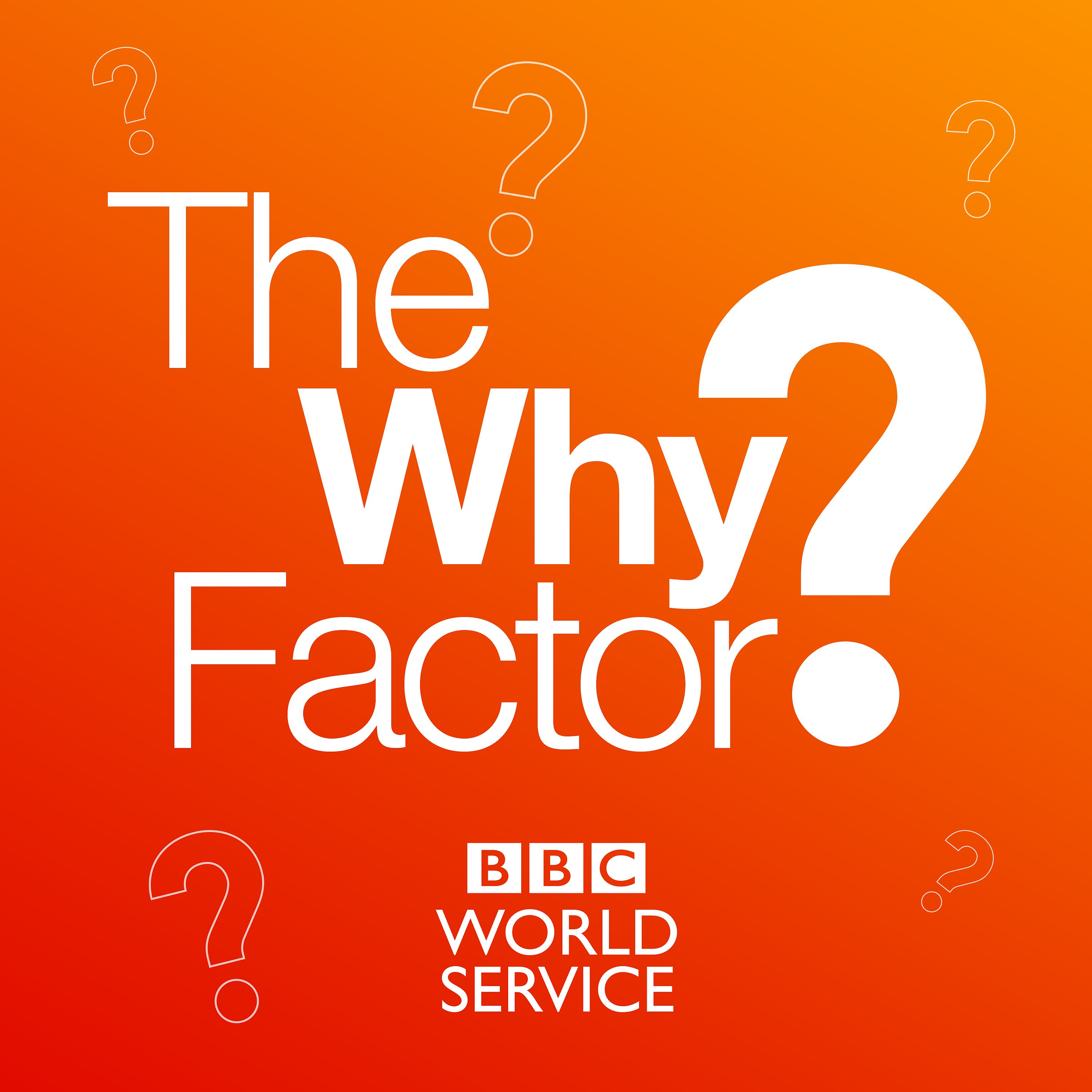 The Why Factor | Podbay