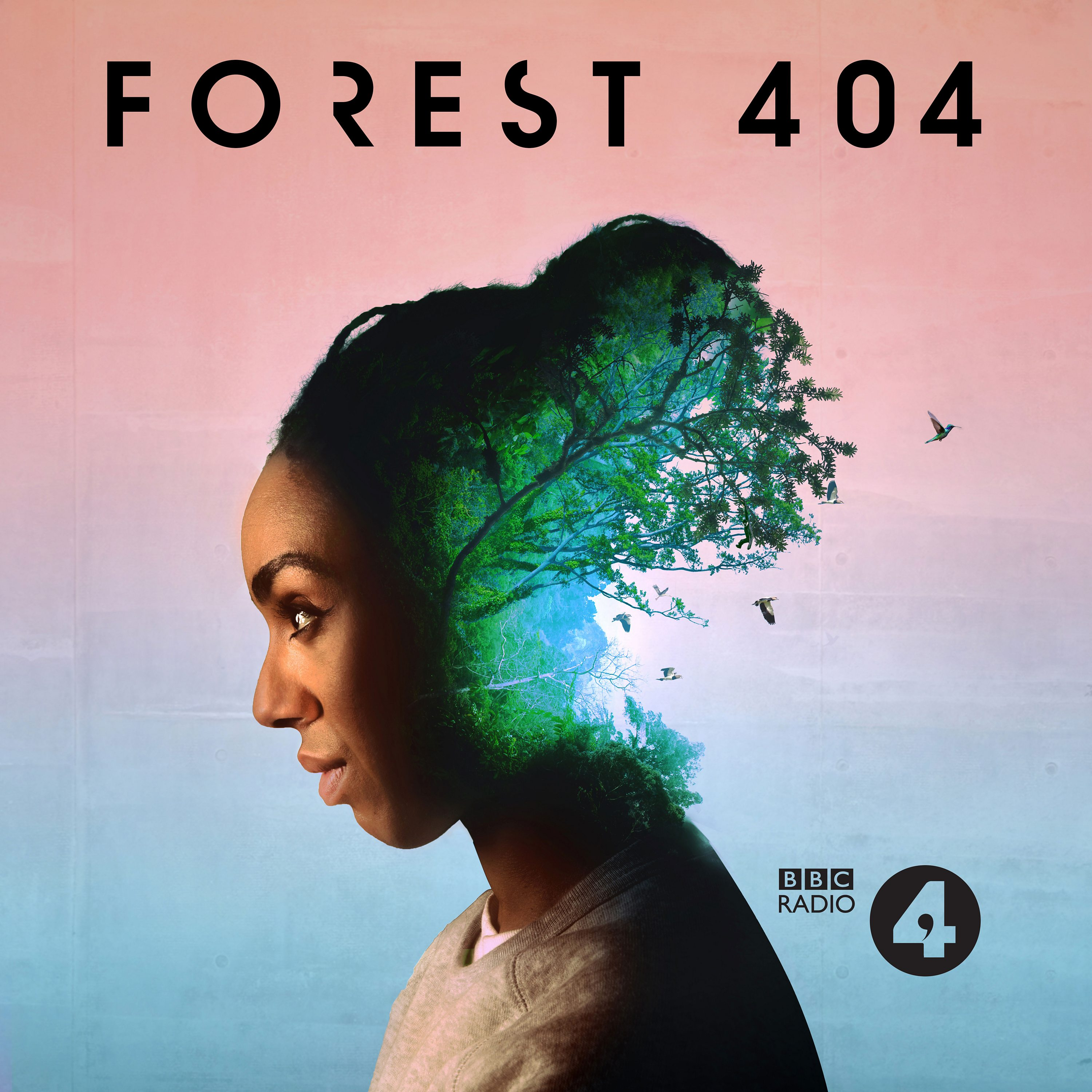 """    Forest 404 "" Podcast"