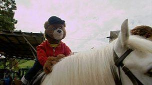 Barnaby Bear and Becky go horse riding