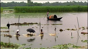 Water and flooding in Bangladesh
