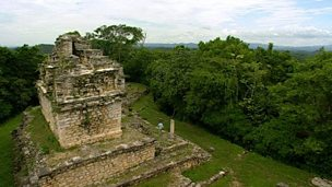 The Mayan population of the Lacandon rainforest